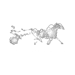Harness-Racing-victoria